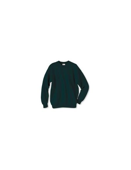 Hanes™ Sweatshirts - Dark Green